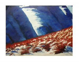 snow tussock oil on canvas paper 660cm x 620cm